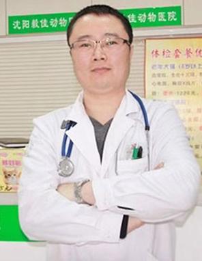 张超-毅佳医院内科主任